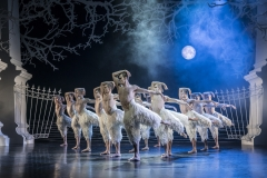SWANLAKE by Bourne,                 , Choreography - Matthew Bourne, Designs - Let Brotherston, Lighting - Paule Constable, New Adventures, 2018, Plymouth, Royal Theatre Plymouth, Credit: Johan Persson/